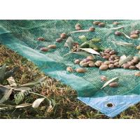 Buy cheap Agriculture Fruit / Olive Harvest Nets / Collecting Net for Fruit Tree Protection Netting from wholesalers