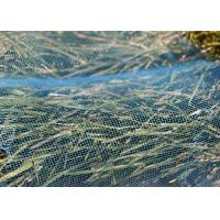 Buy cheap Agricultural Anti Insect Mesh Netting Vegetable Proof With 3-10 Year Useful Life from wholesalers