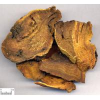 Buy cheap Chinese Rhubarb Root P.E./Rheum Palmatum/Rhodiola Rosea P.E Extract from wholesalers