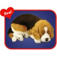 Buy cheap Breathing pets, simulation animal toy, fur toy, animal toy from wholesalers