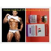 Buy cheap Natural Sustanon 250 Injectable Steroids , Fitness Testosterone Injections Steroids from wholesalers