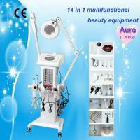 Buy cheap 14in1 multifunction ozone facial steamer beauty salon Au-2008 from wholesalers