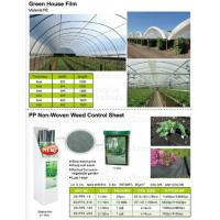 Buy cheap Green house film, pp non-woven weed control sheet,mulch film w/pull-off hole,plant protect sleeve film w/hole, micro hol from wholesalers