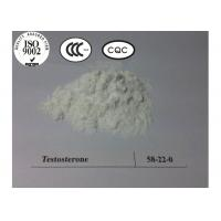 99% Purity high quality hormone steroid Testosterone Base for bodybuilding CAS 58-22-0