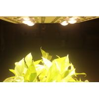 China 415W LED Grow Lights Full Spectrum Growing From Vegetate To Bloom , Grow Rooms / Tents on sale