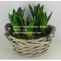 Buy cheap new design home dicorative wicker flower basket willow garden basket plant from wholesalers