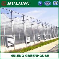 Buy cheap Agricultural Vegetable Tunnel Multi-Span Plastic/Polycarbonate Sheet PC/Hydroponic Venlo Glass/Greenhouse for Farming from wholesalers