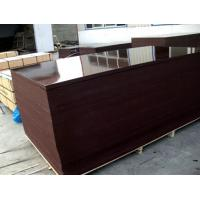 Buy cheap Film faced plywood , building concrete plywood , construction plywood from wholesalers