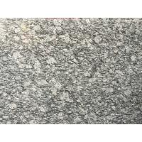Buy cheap Spary White Polished Granite Floor Tiles Fashionable Appearance product
