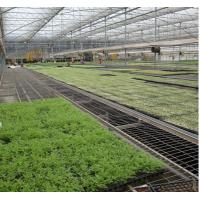 Buy cheap Flower Vegetable Growing Greenhouse Grow Beds Hot Dip Galvanized Stand Material from wholesalers