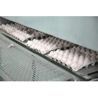 Buy cheap Small Pulp Molding Machine , Egg Tray Production Line , Egg Tray Machine from wholesalers