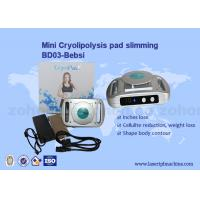 Buy cheap Home Use Cryolipolysis Pad Mini Cryolipolysis Slimming Machine 220V/110V from wholesalers