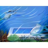 Cool fish aquariums quality cool fish aquariums for sale for Cool fish for sale