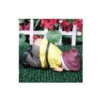 Buy cheap 2011 new hot polyresin garden gnome art product