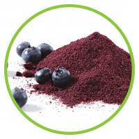 Buy cheap Blueberry Fruit Powder from wholesalers