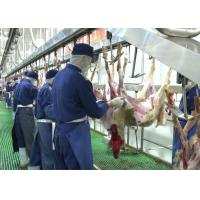 Buy cheap Goat Mutton Split Meat Production Line Slaughter Conveying Whole Processing Type from wholesalers
