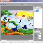 Buy cheap PLASTIC LENTICULAR 3d flip lenticular printing software 2d to 3d design converter from wholesalers