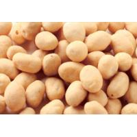 OEM Service Coated Peanut Snack , Garlic BBQ Coated Peanuts Kosher Prodcuts