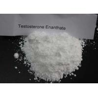 Buy cheap White Test Enanthate Powder , Fast Muscle Growth Steroids CAS 315 37 7 Pharmaceutical Grade from wholesalers