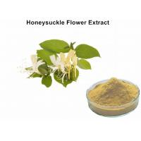 Buy cheap Honeysuckle Flower Plant Extract Powder With 5% Chlorogenic Acid Antibacterial Anti - Inflammatory from wholesalers