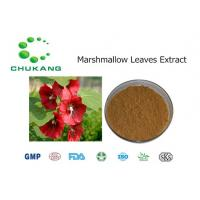 Buy cheap Pure Nature Marshmallow Leaves Extract Althaea Officinalis Leaves Extract from wholesalers