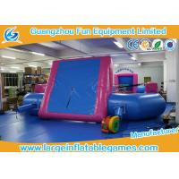 China Blue room Pink PVC Tarpaulin Inflatable Football Pitch / Inflatable Soccer Playground on sale on sale