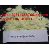 Buy cheap Raw Steroids Trenbolone Powder Trenbolone Enanthate CAS 10161-33-8 For Bodybuilding from wholesalers