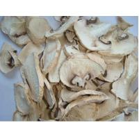 Buy cheap Champignon Mushroom from wholesalers