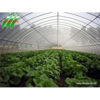 Buy cheap Tunnel Greenhouse from wholesalers