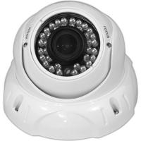 Buy cheap Smart SONY EFFIO-P DSP IR  700TVL Security Dome Camera Double Scan CCD , DC12V / AC24V from wholesalers