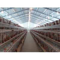 Buy cheap PVC Down Pipe Poultry Farm Structure Chicken Shed With Grey paint Surface from wholesalers