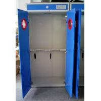 Full Steel Gas Cabients HK / Storage Gas Cabints System Iran / Gas Cabinet Two Cylinder UK
