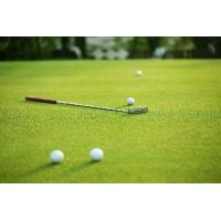 Buy cheap Nylon Golf Turf from wholesalers