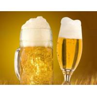 Buy cheap Germany beer export to China Shenzhen port customs broker from wholesalers