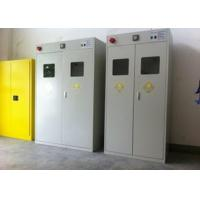 Buy cheap Auto Alarm Compressed Gas Cylinder Storage Cabinets Epoxy Coating Safety Furniture from wholesalers