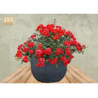 Buy cheap Weathered Garden Pots Clay Flower Pots Resin Outdoor Plant Pots Gray Color Flower Pots from wholesalers