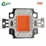 Buy cheap 10w cob grow led chip , full spectrum 380nm~840nm full spectrum led grow light for plant from wholesalers