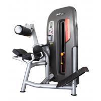 High End Back Exercise Machine , Men'S Body Power Lift Gym Equipment