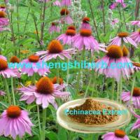 Buy cheap Echinacea Extract/Echinacea Purpurea Extract product
