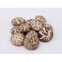 Buy cheap Natural Organic Bulk Edible Dried Shiitake Mushroom For Food from wholesalers