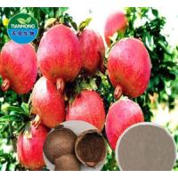 Buy cheap Pomegranate hull Extract from wholesalers