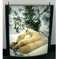 Buy cheap Waterproof Light Box Poster Printing , Backlit Film Printing from wholesalers