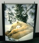 Waterproof Light Box Poster Printing , Backlit Film Printing