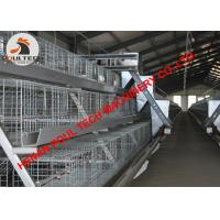 Buy cheap Poultry Farming Equipment Battery Broiler Chicken Cage System with 120 Birds with Automatic Feeding & Drinking System from wholesalers