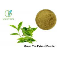 Buy cheap Water Soluble Pure Green Tea Extract Camellia Sinensis Leaf Extract Anti - Caries Effect from wholesalers