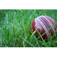 Buy cheap artificial lawn for Cricket pitches--SKYJADE from wholesalers