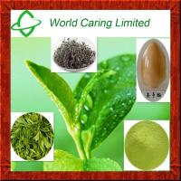 Buy cheap Herbal Extract green tea extract tea polyphenol 50%-98% HPLC product