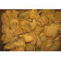 Buy cheap Turkey Rhubarb Root  (Rheum palmatum)  Chinese Individual Herbs Food & Medcine Grade from wholesalers