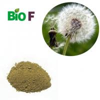 Buy cheap Dandelion Extract Powder , Dandelion Root Supplement For 10% Flavone from wholesalers