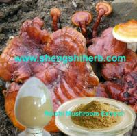 Buy cheap Reishi Extract product